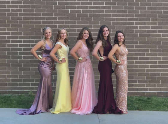 Glammed up and Proud  Seniors line up together before the coronation in their beautiful dresses. Each senior has been a  life-long Comet.